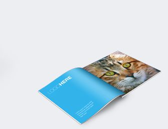 Brochure<br><br><br><br>