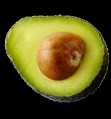 avocado fruit berry